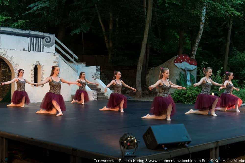 Tanzwerkstatt 2015  Foto © KH Mierke-0018