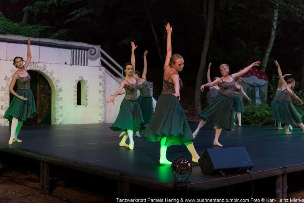 Tanzwerkstatt 2015  Foto © KH Mierke-0050
