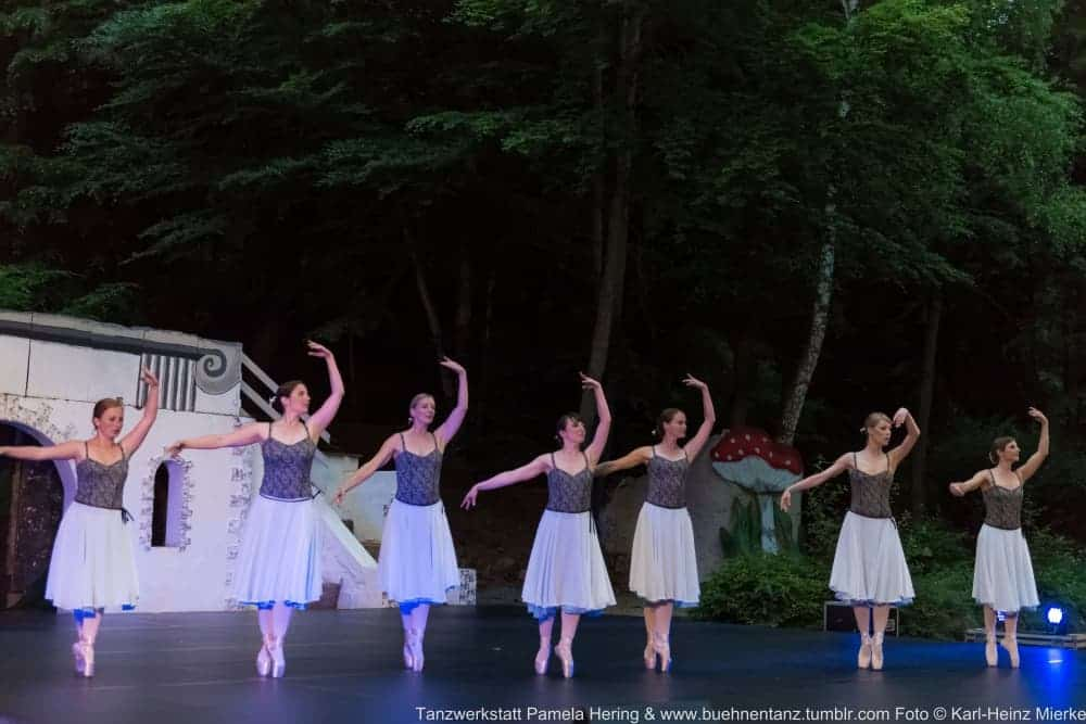 Tanzwerkstatt 2015  Foto © KH Mierke-0072