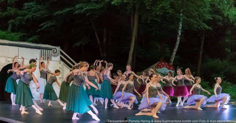 Tanzwerkstatt 2015  Foto © KH Mierke-0111