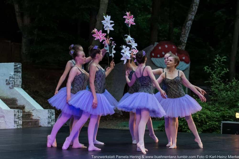 Tanzwerkstatt 2015  Foto © KH Mierke-8608