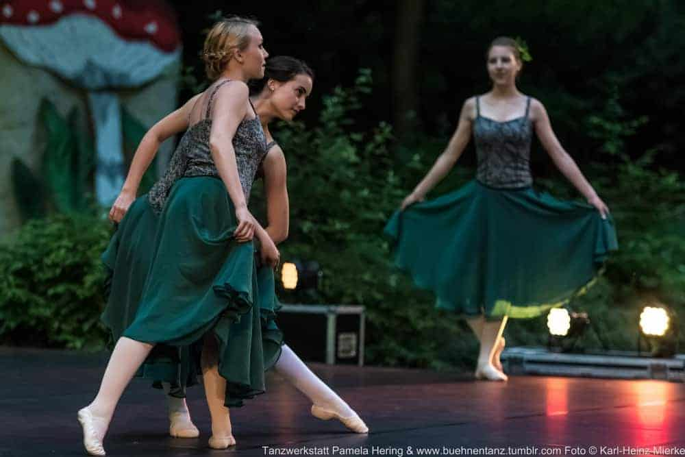 Tanzwerkstatt 2015  Foto © KH Mierke-8766