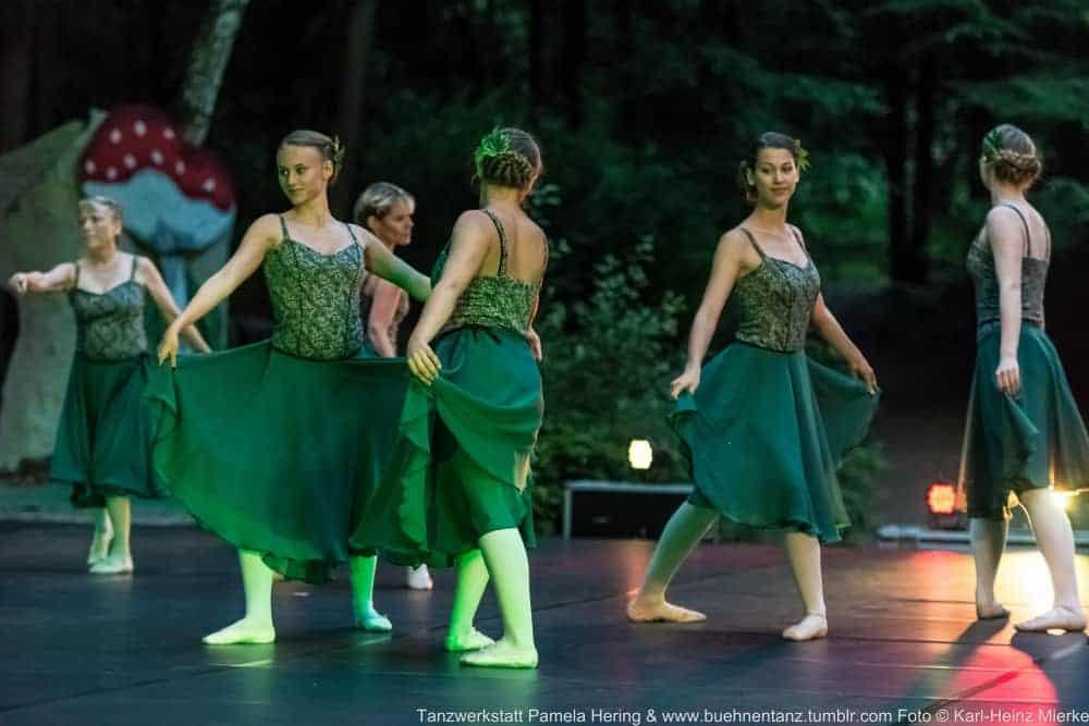 Tanzwerkstatt 2015  Foto © KH Mierke-8782