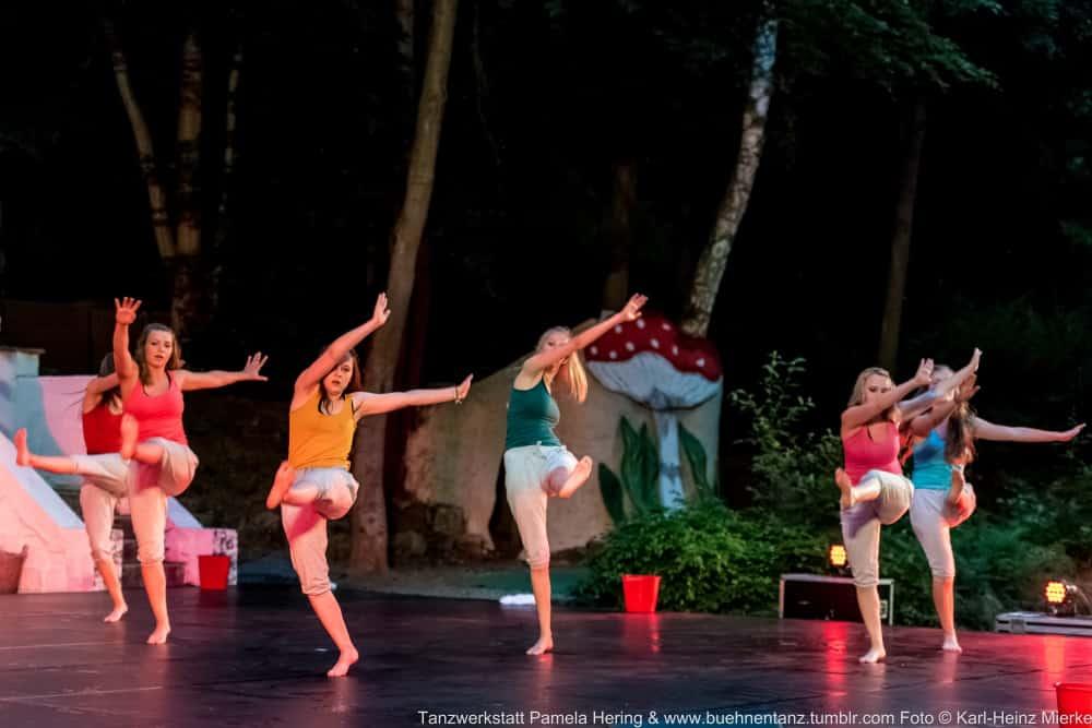 Tanzwerkstatt 2015  Foto © KH Mierke-9105